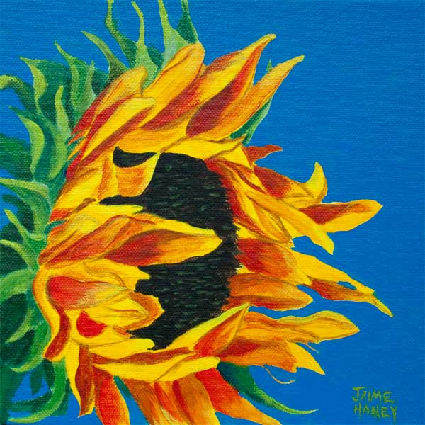 """All Ablaze"" colorful and bold Sunflower painting"