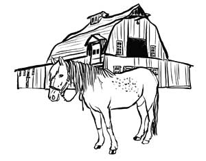 Illustration I Drew Of A Horse In Front Barn