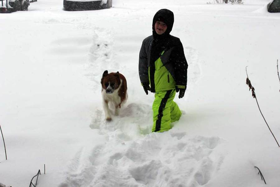 Asher and Zoey in the snow