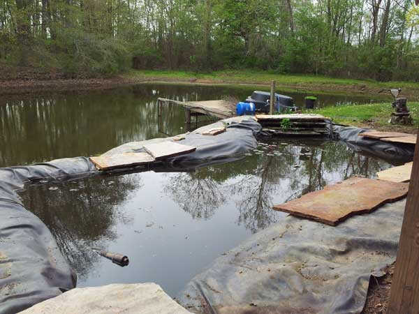view of koi pond and lake behind it