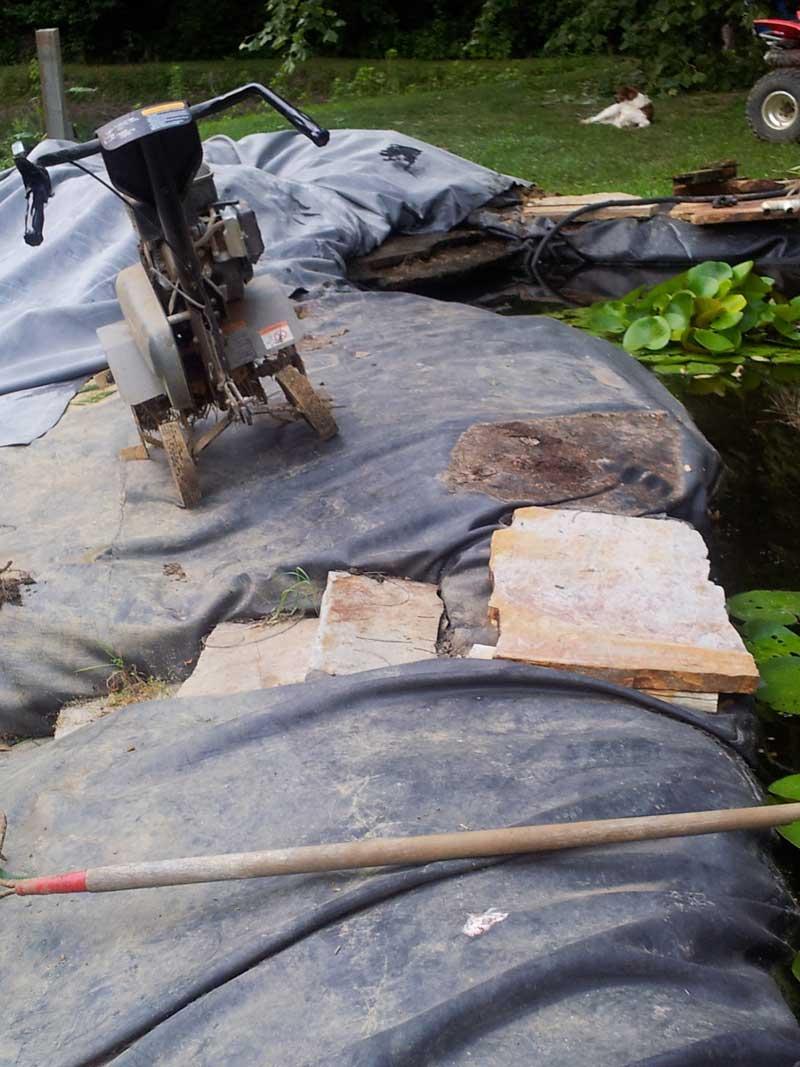 Next phase of koi pond in studio gardens jaime haney for Koi pond overflow