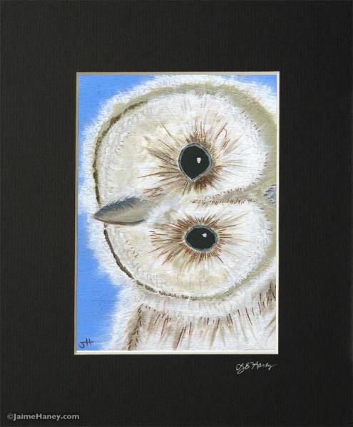 "baby barn owl painting ""Hoo Me?"""