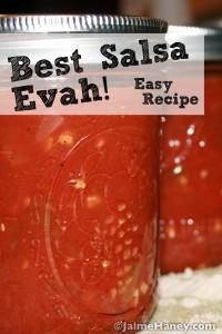 Best Salsa Recipe Ever! graphic