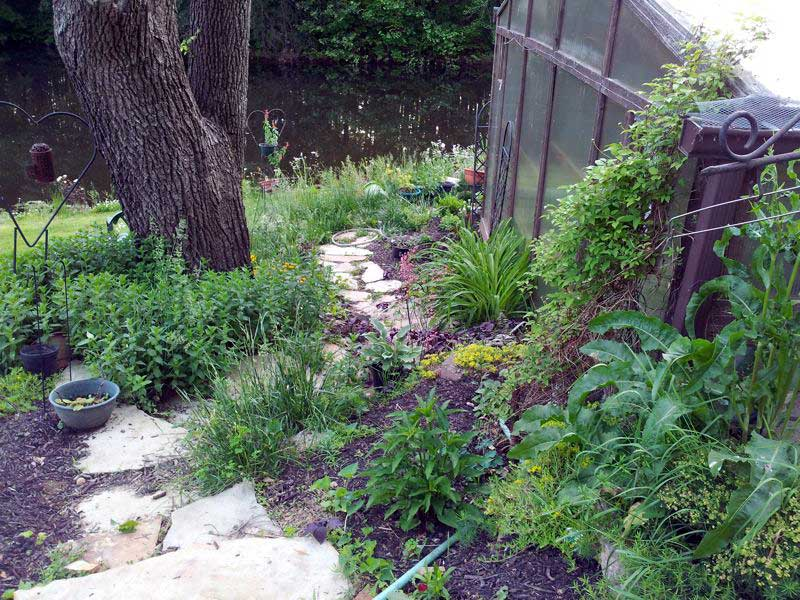 Rustic stone steps the next spring