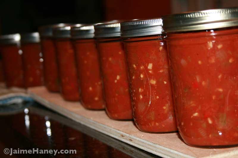 Jars of freshly canned salsa cooling