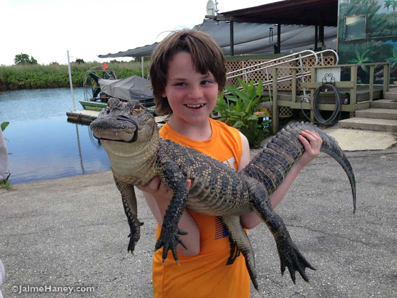 holding an alligator