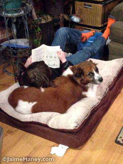 boy and dog sharing bed