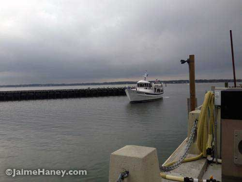 The Vagabond coming into the harbor.