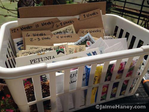 Seed organization basket