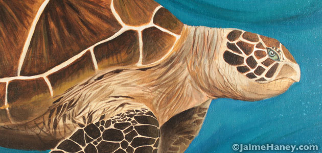Sea Turtle Painting – a new commission