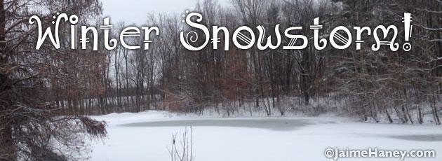Winter Snowstorm hit us pretty hard