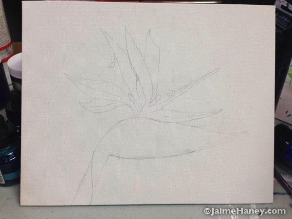 Bird of paradise sketch