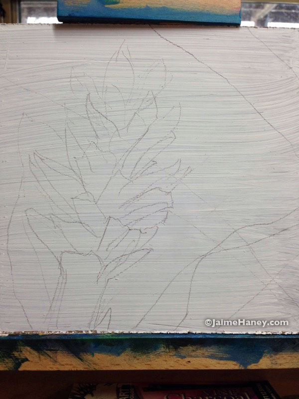 sketch of red ginger plant on board