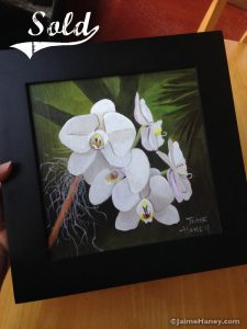 sold tropical painting of white moth orchid