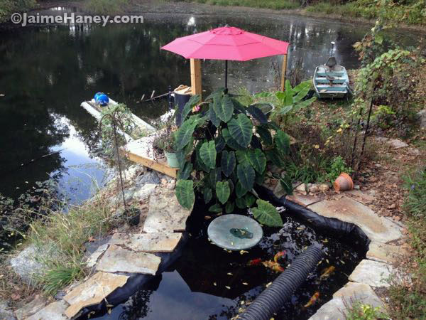 """The """"before"""" photo of the koi pond with plain upcycled plastic patio table top"""