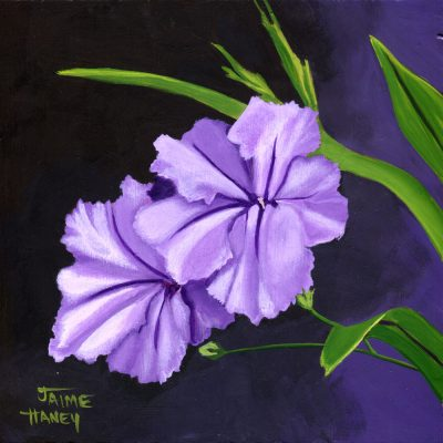 Purple Mexican petunia painting.